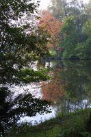 bosweg2