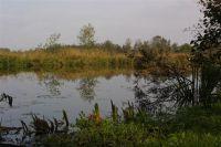 bosweg4